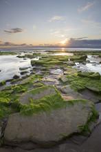 Setting Sun On The Coast At Ma...