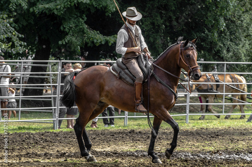 Cadres-photo bureau Equitation Buttero al galoppo