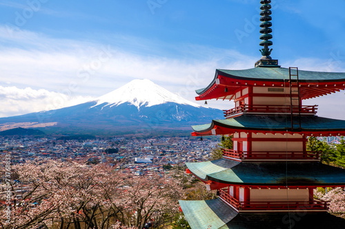 Fototapety, obrazy: The mount Fuji, Japan