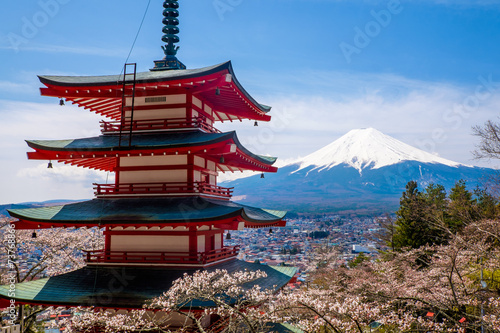 Tuinposter Japan The mount Fuji, Japan