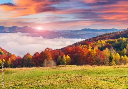 Foto op Plexiglas Crimson Colorful autumn morning in the Carpathian mountains.