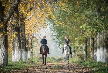 Fototapeta Horse ride