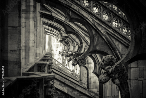 Duomo of Milan - detail