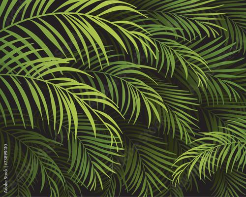 Ingelijste posters Tropische Bladeren tropical background