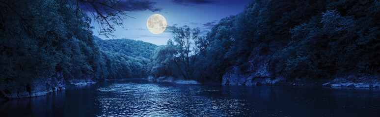 forest river with stones on shores at night