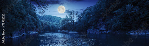 Canvas Prints Forest river forest river with stones on shores at night