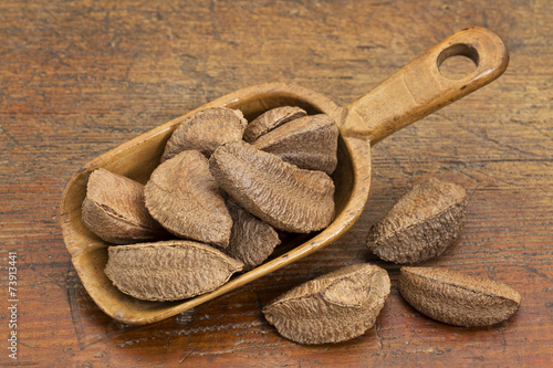 Photo  Brazilian nuts in rustic scoop