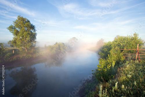 Poster Rivière de la forêt fog on the river