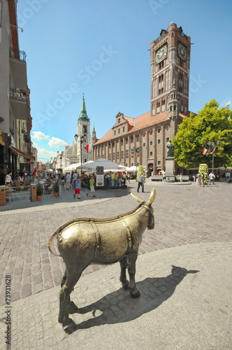 Fotografía Esel, Rathaus, Torun, #8726
