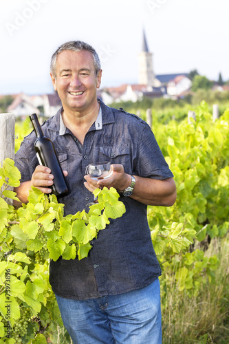 Fotografía  Man with wine bottle and glasses in vineyard