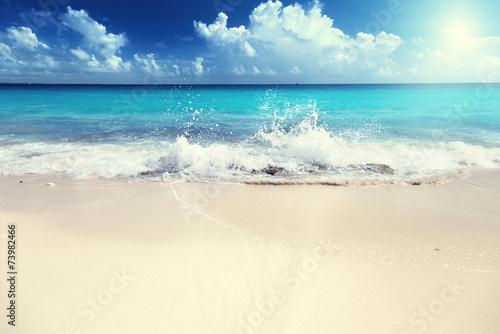 Foto auf Gartenposter Strand sand of beach caribbean sea