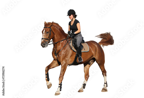 Fotografía  Brunette woman cantering on chestnut horse isolated on white