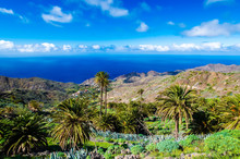 Palm Trees In Tropical Mountain Landscape Of La Gomera Island