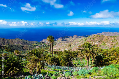 Palm trees in tropical mountain landscape of La Gomera island Canvas Print