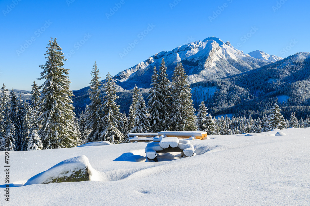 Fototapety, obrazy: Winter landscape of Rusinowa polana, Tatra Mountains, Poland