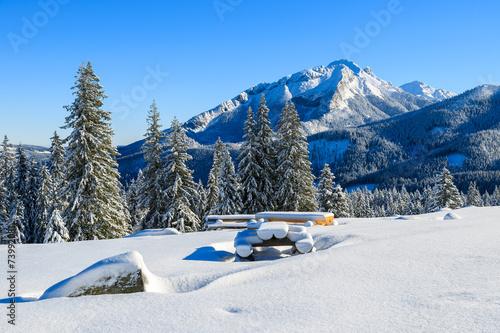 Fototapeta Winter landscape of Rusinowa polana, Tatra Mountains, Poland obraz