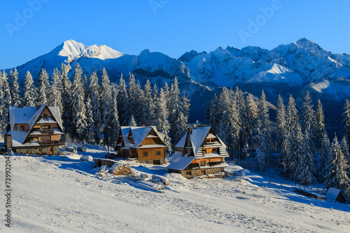 Houses in Bukowina Tatrzanska in winter, Tatra Mountains, Poland