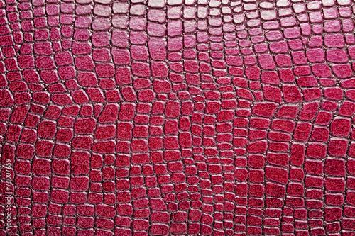 obraz PCV Czerwone tło wzór aligatora