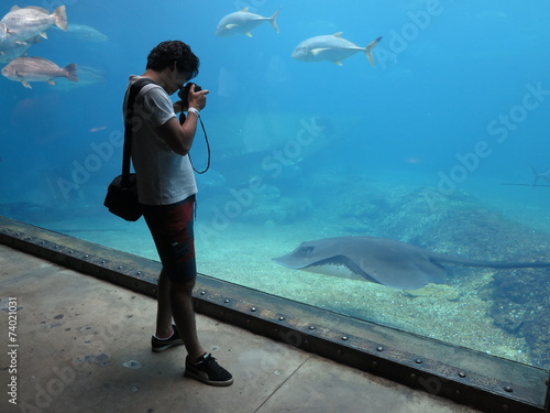 Foto op Plexiglas Zuid Afrika Besucher Aquarium UShaka Marine World Durban Südafrika