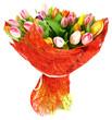 51 tulips