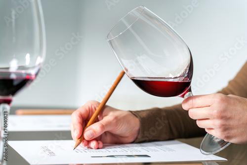 Cuadros en Lienzo Sumiller evaluación de vino tinto.