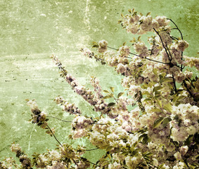 Panel Szklany Grunge grunge cherry flowers