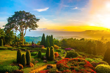Beautiful Garden Of Colorful Flowers On Hill With Sunrise In The
