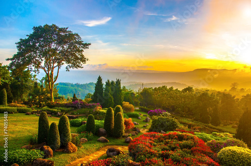 Poster Honey Beautiful garden of colorful flowers on hill with sunrise in the