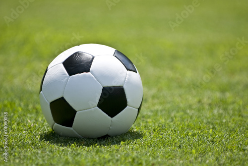 Soccer Ball (Football) on Grass