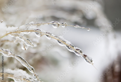 Frozen water drops