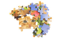 Cat Jigsaw Puzzle Pieces Isola...
