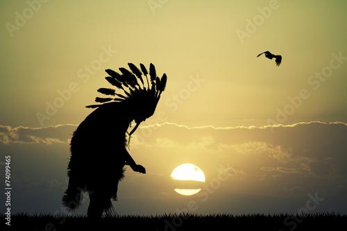 Fotomural Indian at sunset
