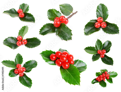 Fotografie, Obraz  Leaves of mistletoe with berries collage, isolated on white