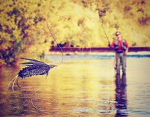 A Person Fly Fishing With A Bi...