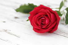 Red Rose On White Wood Background