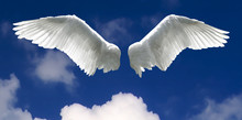 Angel Wings With Sky Background