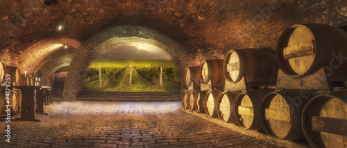 La pose en embrasure Vignoble wine cellar