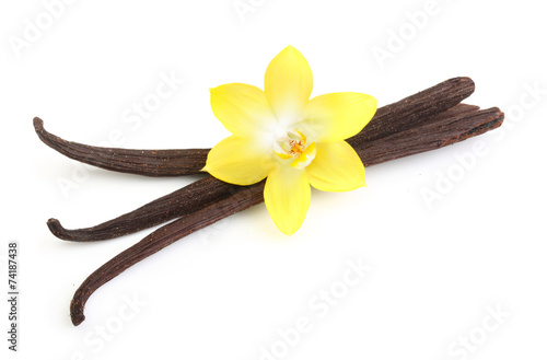 Fotografía  Vanilla pods and flower isolated