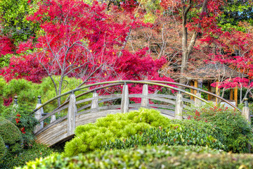 FototapetaMoon Bridge in the Japanese Gardens