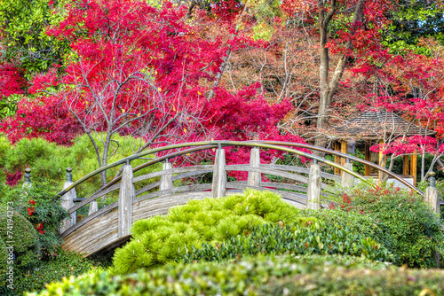 Moon Bridge in the Japanese Gardens - 74194273