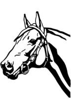 Horsehead 2