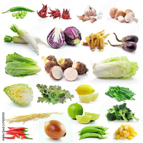 set of vegetable on white background