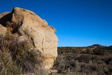 Large Boulder Among Shrubs In The Desert