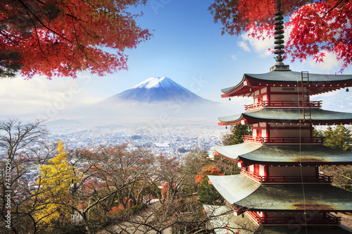 Spoed Foto op Canvas Tokyo Mt. Fuji with fall colors in Japan.