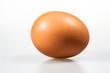 Ein Ei freigestellt mit weißem Hintergrund