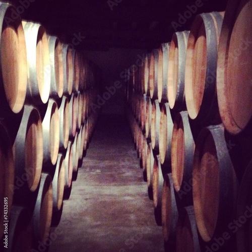 Fotografie, Obraz cave a vin bordeaux