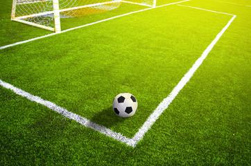 Fototapeta piłka w polu bramkowym