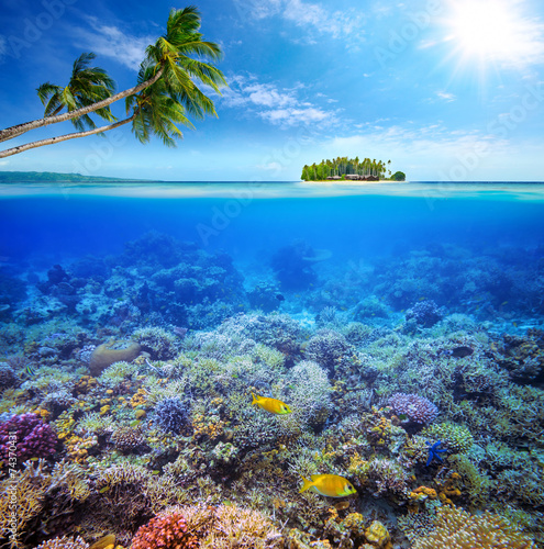 Staande foto Koraalriffen Coral reef with fish on background of small island. Maldives