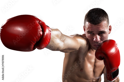 Photo  Professionl boxer is isolated on white