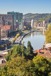 Bilbao from Etxebarria park (Spain)